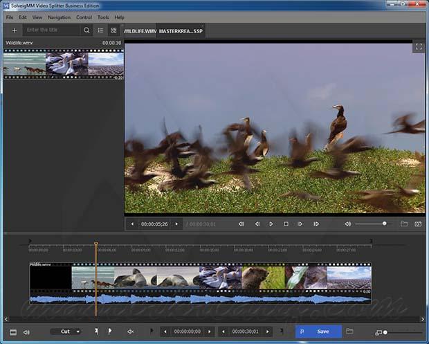 SolveigMM Video Splitter Serial Key